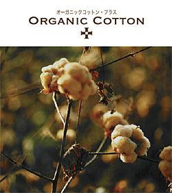0911-0917organic_cotton