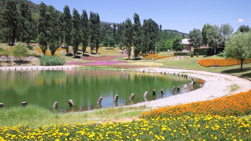 国営明石海峡公園はお花がいっぱい