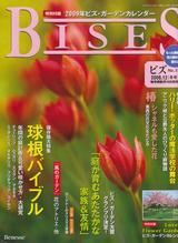 bises1